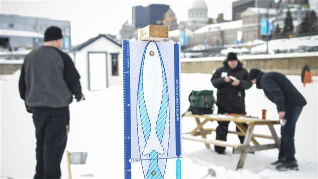 Le site de pêche sur glace dans le Vieux-Montréal Photo : Radio-Canada/Marie-Eve Maheu